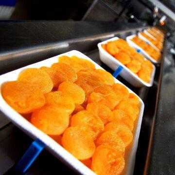Contamination alimentaire : retour sur le DigiClub du 26/03/21